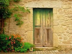 生活不止诗和远方的田野 ,还有家和门前的鲜花盛开