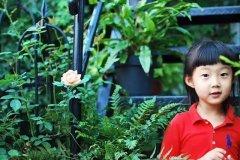她的花园也像她的名字一样,雌雄莫辩,散发着一种中性美