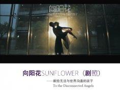 《向阳花》文字是安静的宣泄,当遇上舞之后,也许爆发就在那一刻