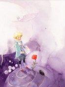 《小王子》它所表现出的是讽刺与幻想,真情与哲理
